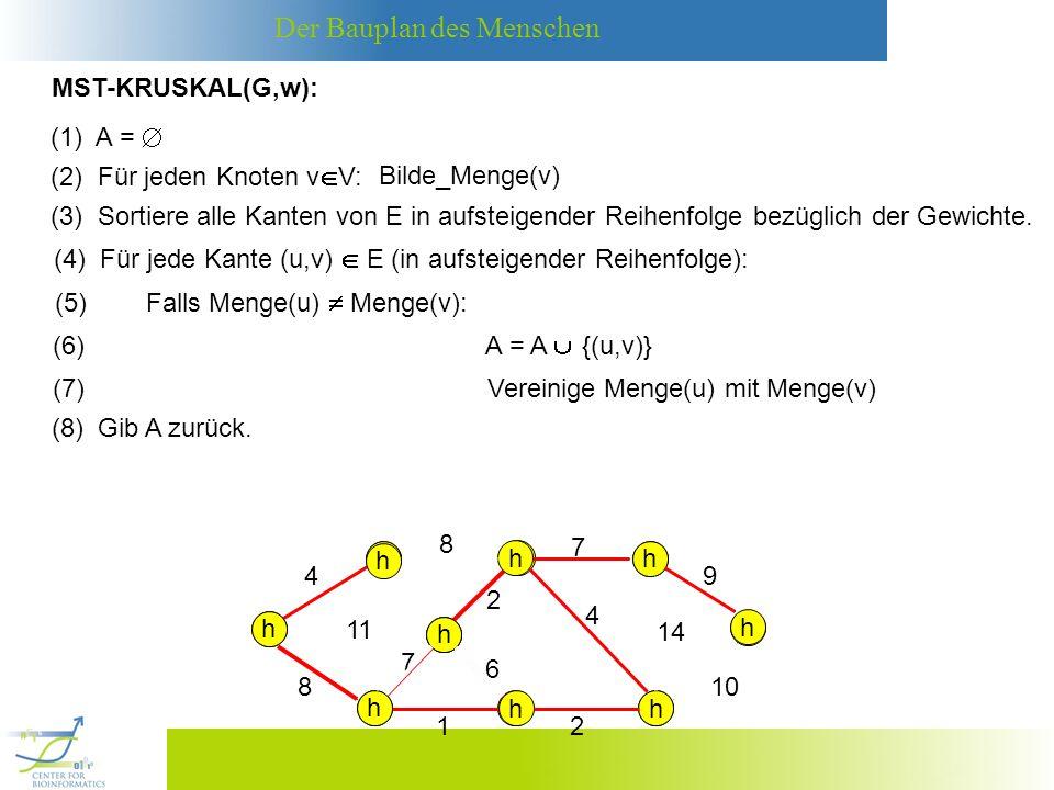 Der Bauplan des Menschen Korrektheit: Berechnet MST-KRUSKAL wirklich einen MST von G.