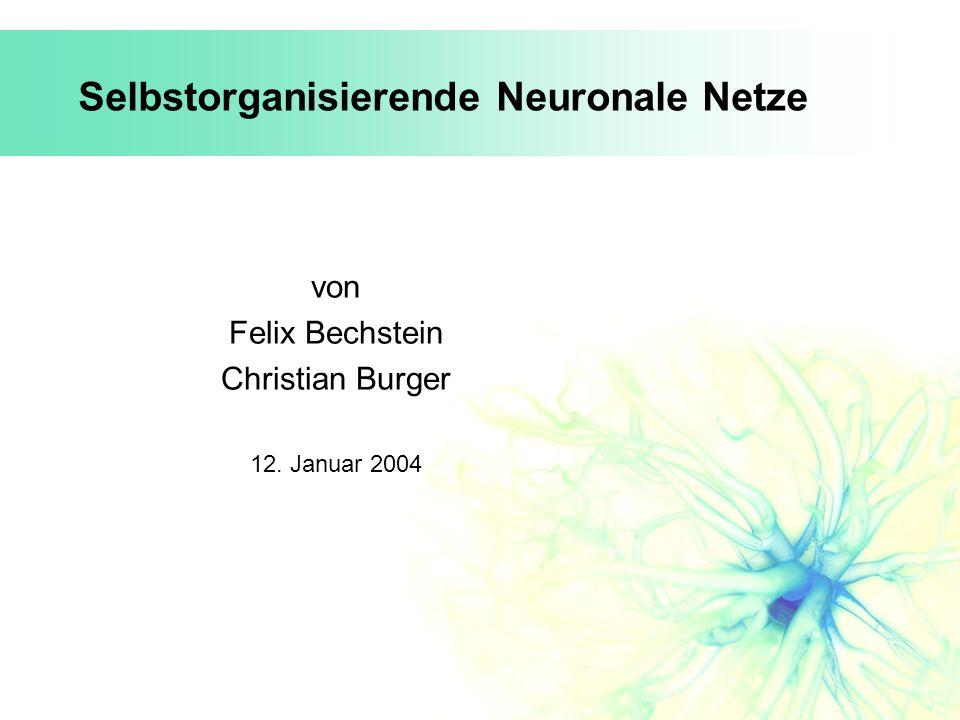Selbstorganisierende Neuronale Netze von Felix Bechstein Christian Burger 12. Januar 2004