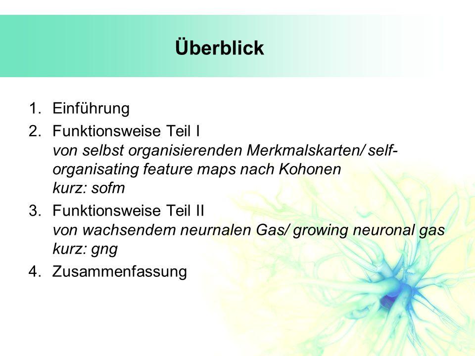 Überblick 1.Einführung 2.Funktionsweise Teil I von selbst organisierenden Merkmalskarten/ self- organisating feature maps nach Kohonen kurz: sofm 3.Fu