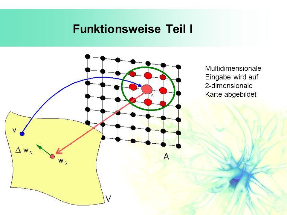 Funktionsweise Teil I Multidimensionale Eingabe wird auf 2-dimensionale Karte abgebildet