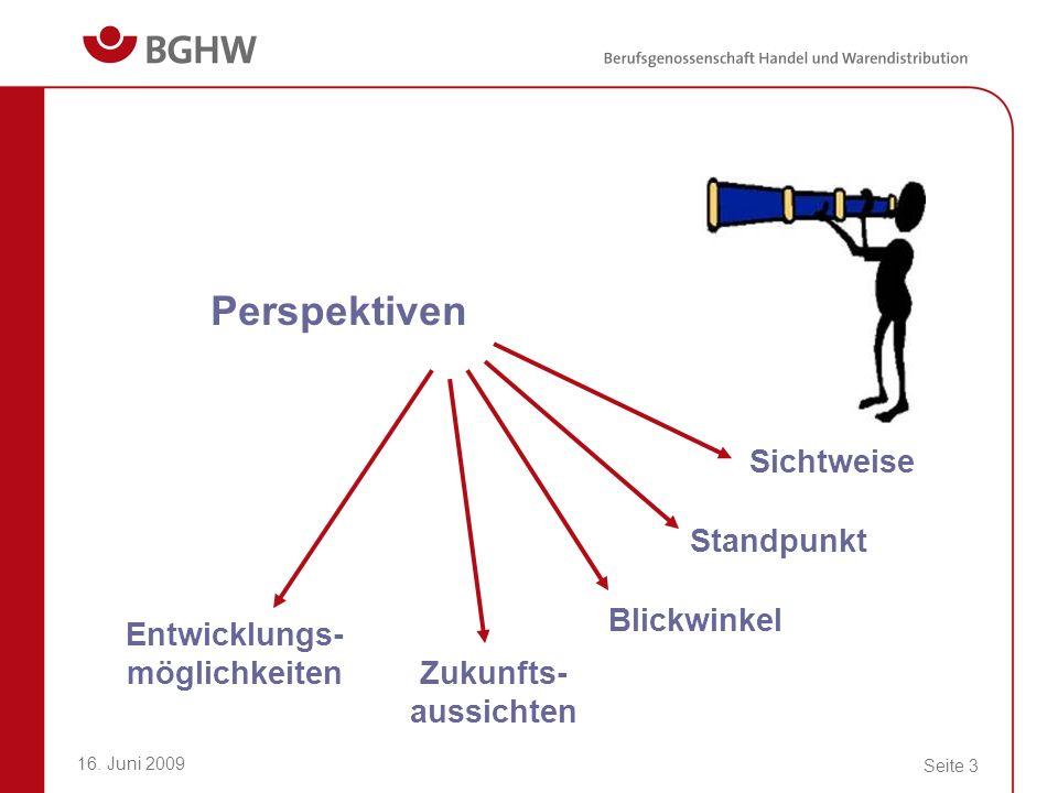 16. Juni 2009 Seite 3 Perspektiven Sichtweise Standpunkt Blickwinkel Zukunfts- aussichten Entwicklungs- möglichkeiten