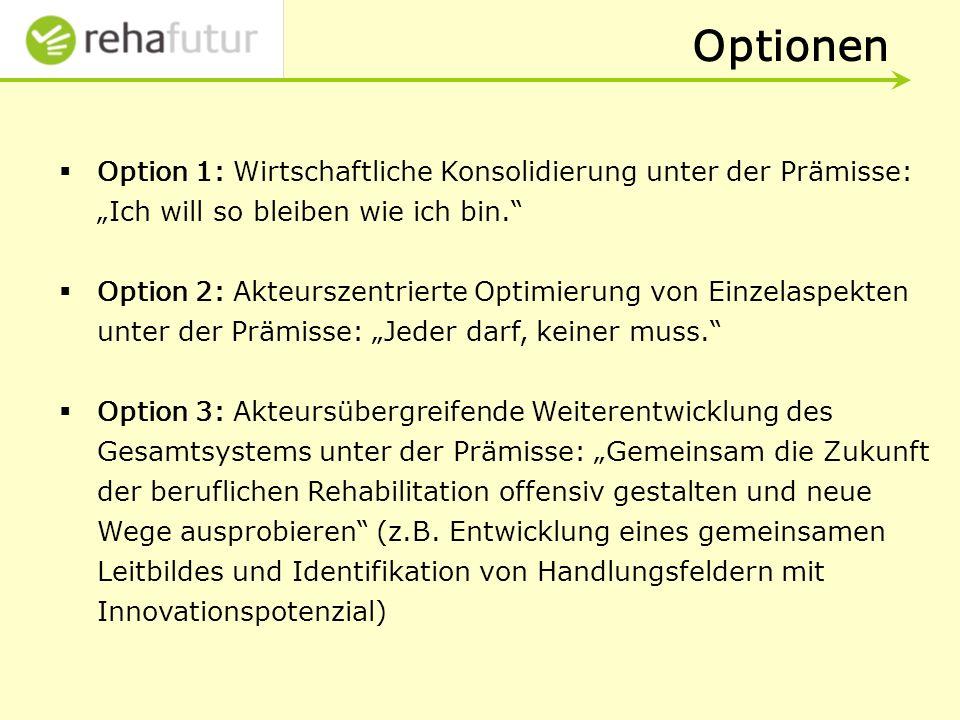 Optionen Option 1: Wirtschaftliche Konsolidierung unter der Prämisse: Ich will so bleiben wie ich bin.