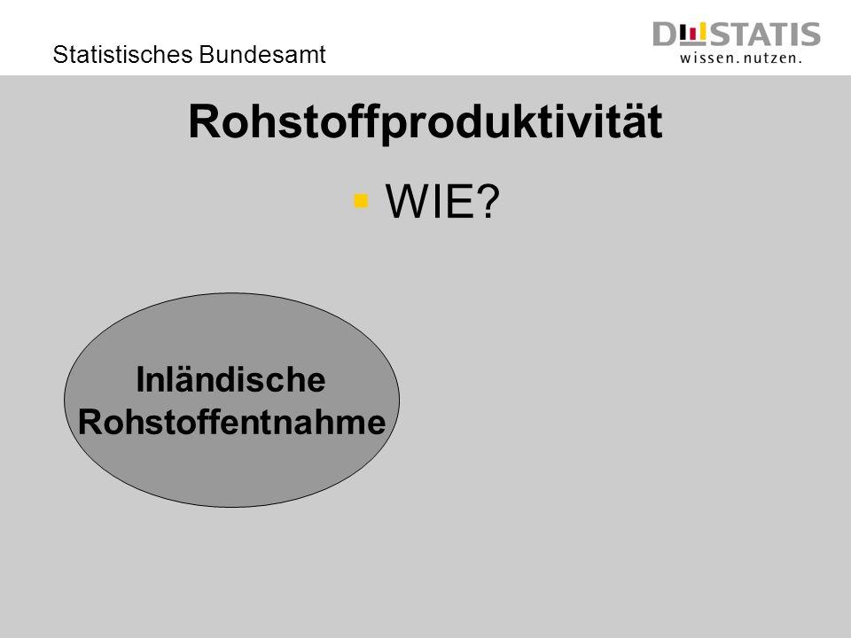 Statistisches Bundesamt Rohstoffproduktivität WIE? Inländische Rohstoffentnahme