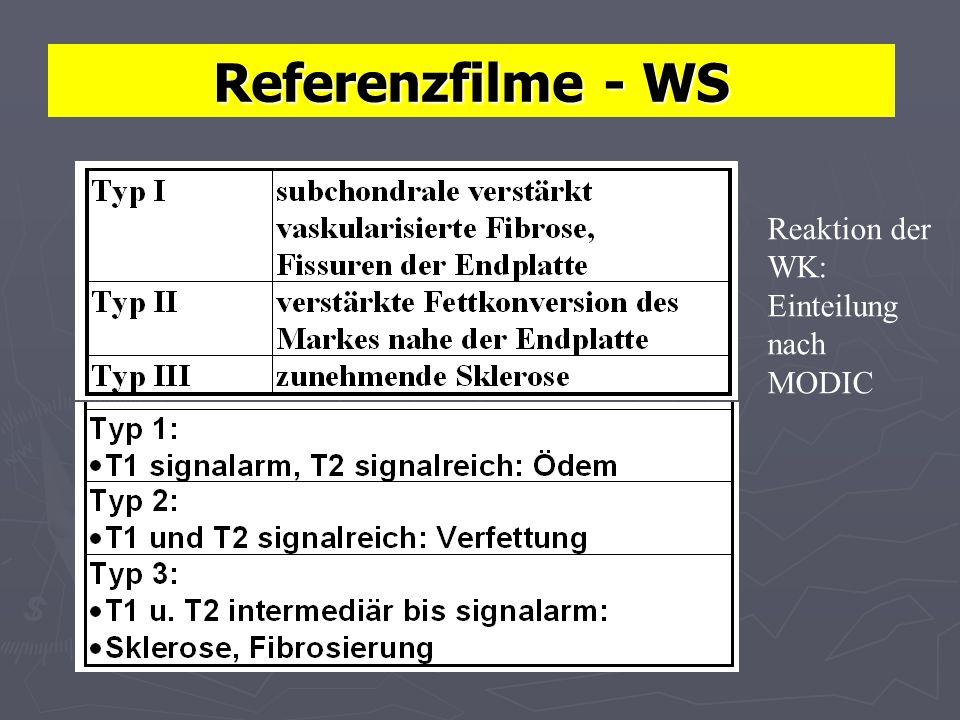 Referenzfilme - WS Reaktion der WK: Einteilung nach MODIC