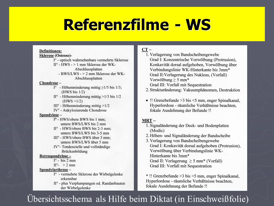 Referenzfilme - WS Übersichtsschema als Hilfe beim Diktat (in Einschweißfolie)