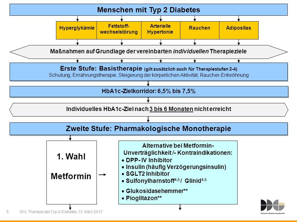 5 Menschen mit Typ 2 Diabetes Individuelles HbA1c-Ziel nach 3 bis 6 Monaten nicht erreicht Erste Stufe: Basistherapie (gilt zusätzlich auch für Therap