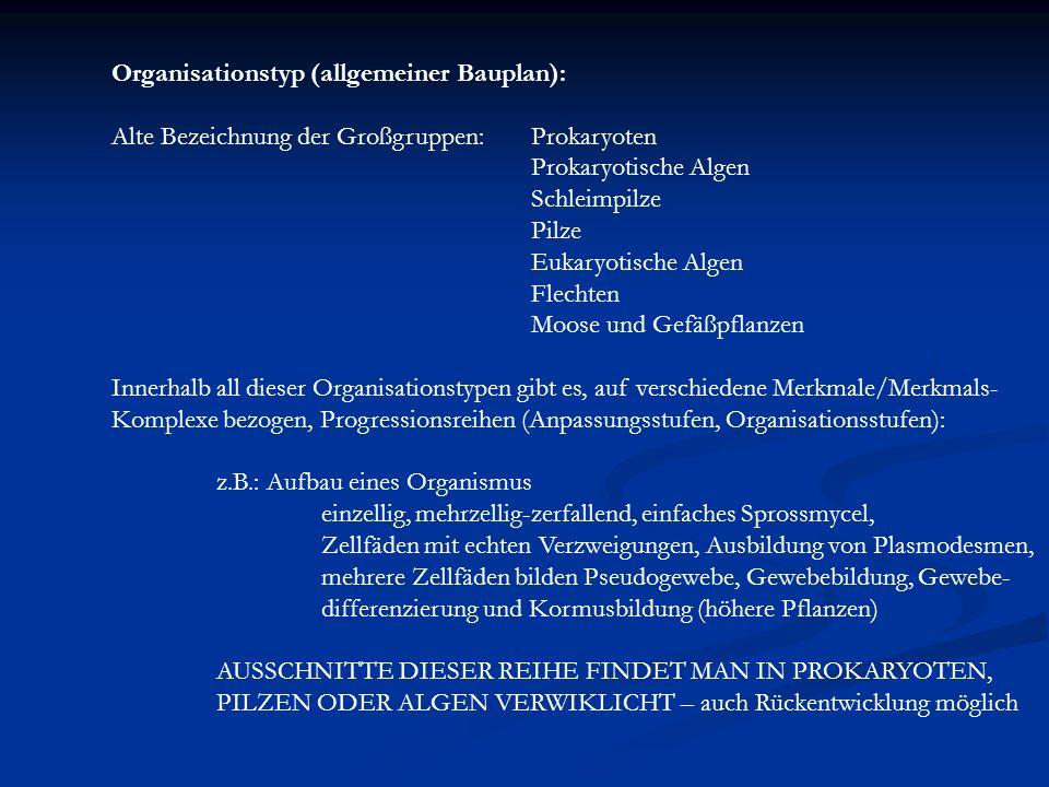 Organisationstyp (allgemeiner Bauplan): Alte Bezeichnung der Großgruppen:Prokaryoten Prokaryotische Algen Schleimpilze Pilze Eukaryotische Algen Flech