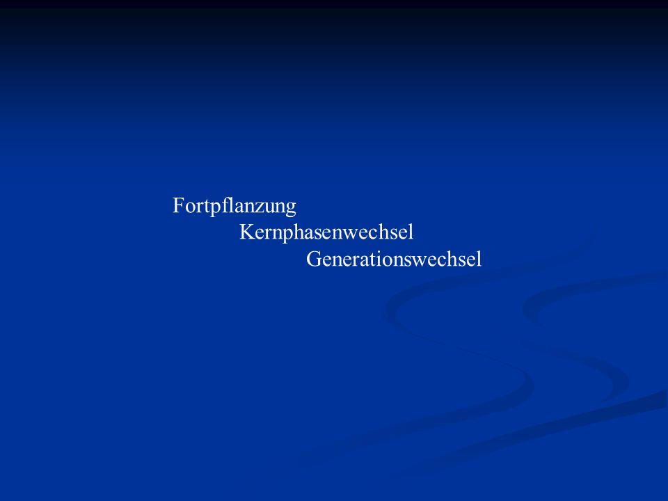 Fortpflanzung Kernphasenwechsel Generationswechsel