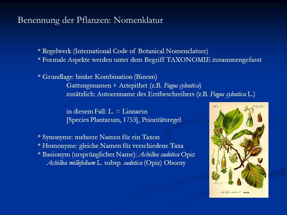 Benennung der Pflanzen: Nomenklatur * Regelwerk (International Code of Botanical Nomenclature) * Formale Aspekte werden unter dem Begriff TAXONOMIE zu