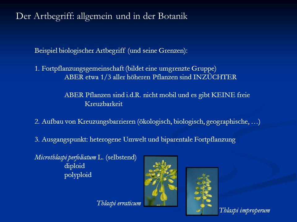 Der Artbegriff: allgemein und in der Botanik Beispiel biologischer Artbegriff (und seine Grenzen): 1. Fortpflanzungsgemeinschaft (bildet eine umgrenzt