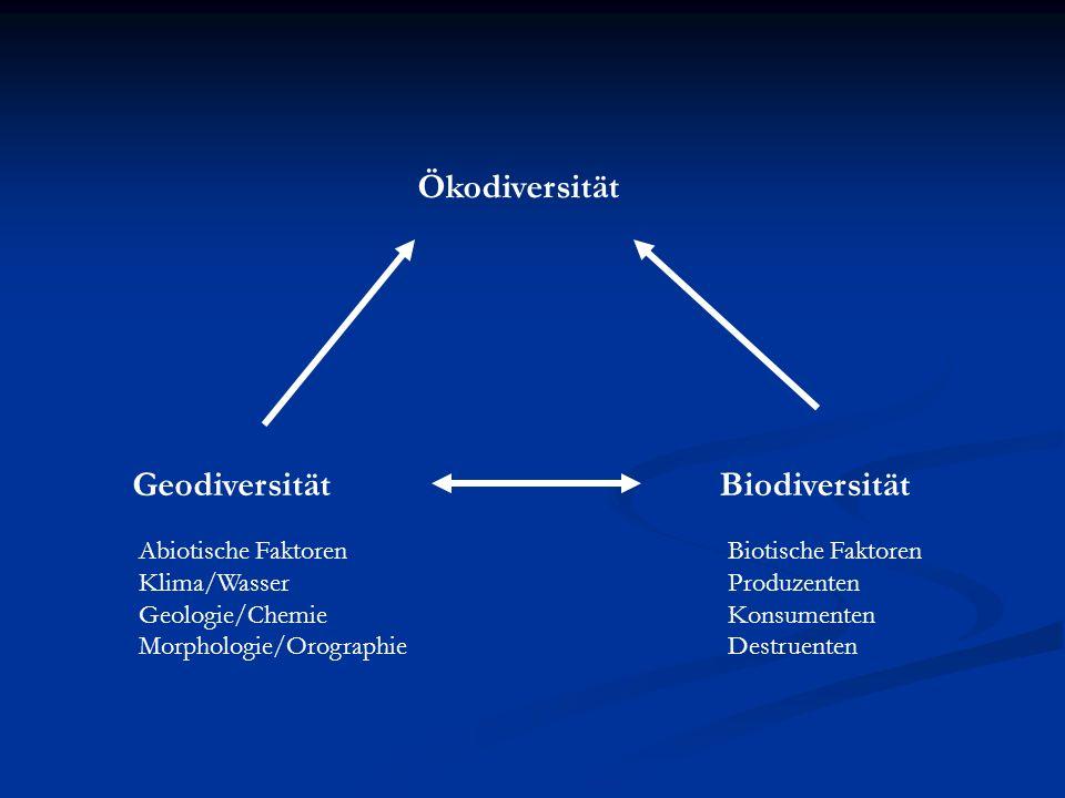 Ökodiversität BiodiversitätGeodiversität Abiotische Faktoren Klima/Wasser Geologie/Chemie Morphologie/Orographie Biotische Faktoren Produzenten Konsum