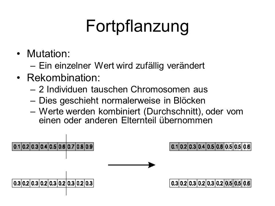 Fortpflanzung Mutation: –Ein einzelner Wert wird zufällig verändert Rekombination: –2 Individuen tauschen Chromosomen aus –Dies geschieht normalerweis