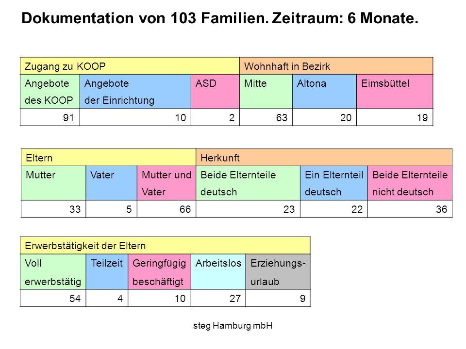 steg Hamburg mbH Zugang zu KOOP Wohnhaft in Bezirk Angebote ASDMitteAltonaEimsbüttel des KOOPder Einrichtung 91 102632019 Eltern Herkunft MutterVaterM
