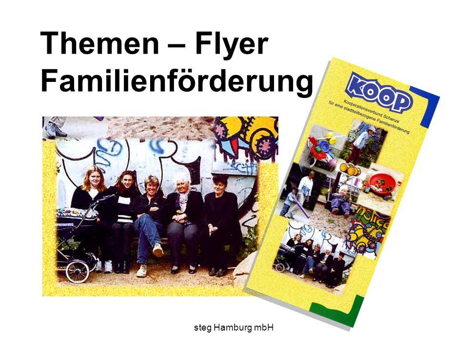 steg Hamburg mbH Themen – Flyer Familienförderung