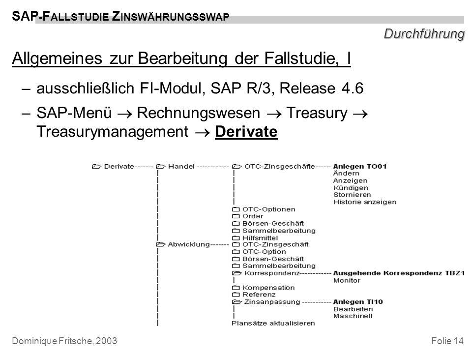 Folie 14 SAP - F ALLSTUDIE Z INSWÄHRUNGSSWAP Dominique Fritsche, 2003 Durchführung Allgemeines zur Bearbeitung der Fallstudie, I –ausschließlich FI-Mo