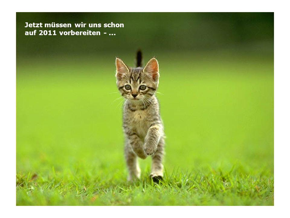 Jetzt müssen wir uns schon auf 2011 vorbereiten -...