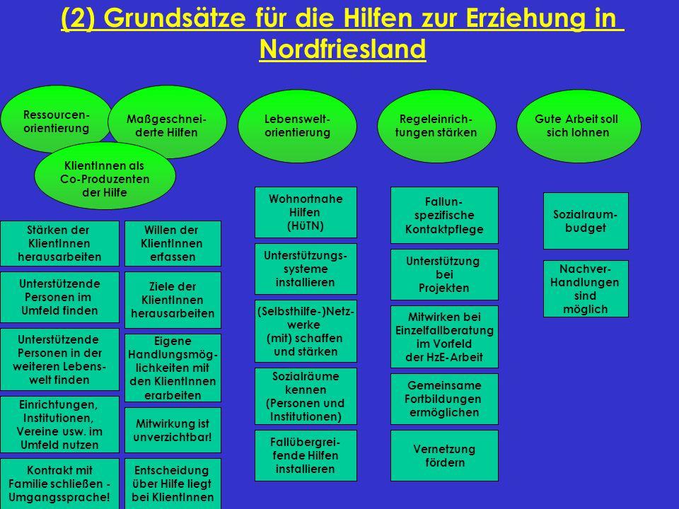 (2) Grundsätze für die Hilfen zur Erziehung in Nordfriesland Ressourcen- orientierung Maßgeschnei- derte Hilfen KlientInnen als Co-Produzenten der Hil