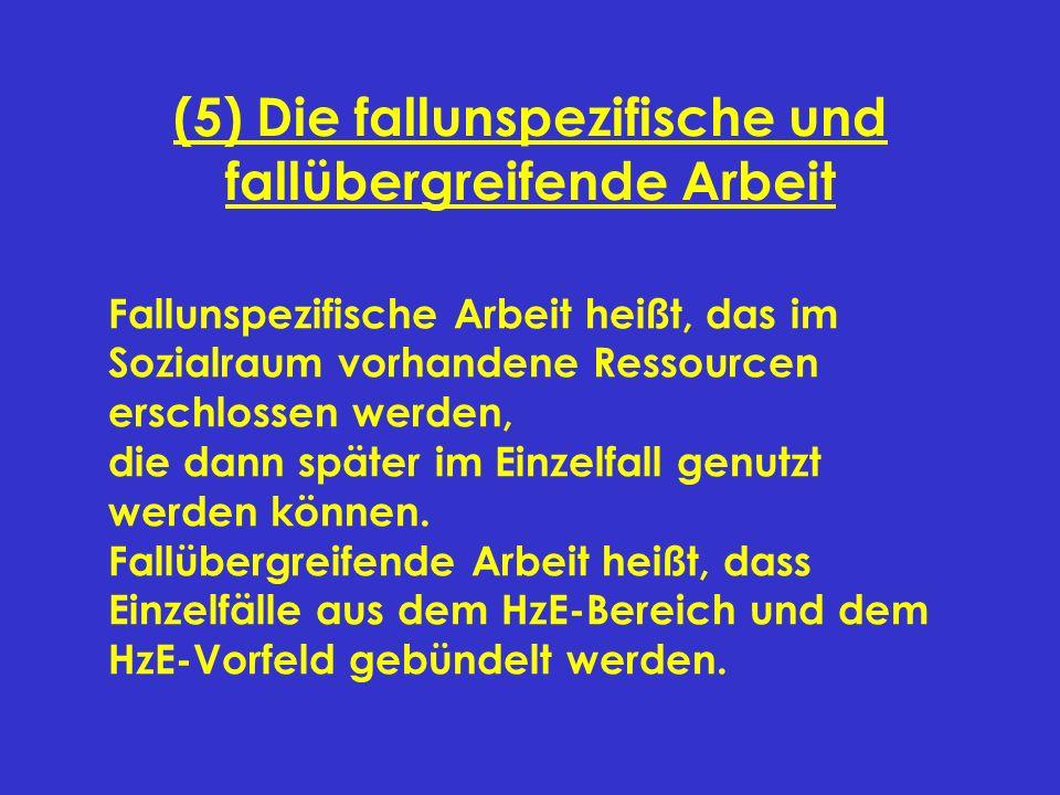 (5) Die fallunspezifische und fallübergreifende Arbeit Fallunspezifische Arbeit heißt, das im Sozialraum vorhandene Ressourcen erschlossen werden, die