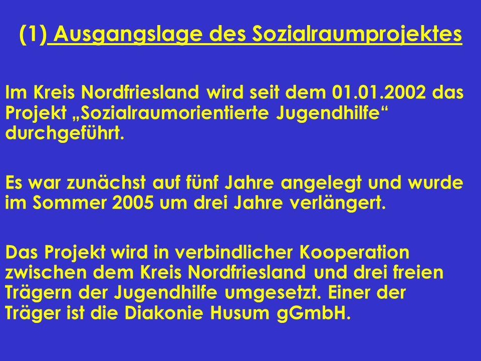 (1) Ausgangslage des Sozialraumprojektes Im Kreis Nordfriesland wird seit dem 01.01.2002 das Projekt Sozialraumorientierte Jugendhilfe durchgeführt. E