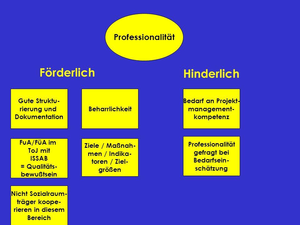 Professionalität Gute Struktu- rierung und Dokumentation FuA/FüA im ToJ mit ISSAB = Qualitäts- bewußtsein Beharrlichkeit Bedarf an Projekt- management