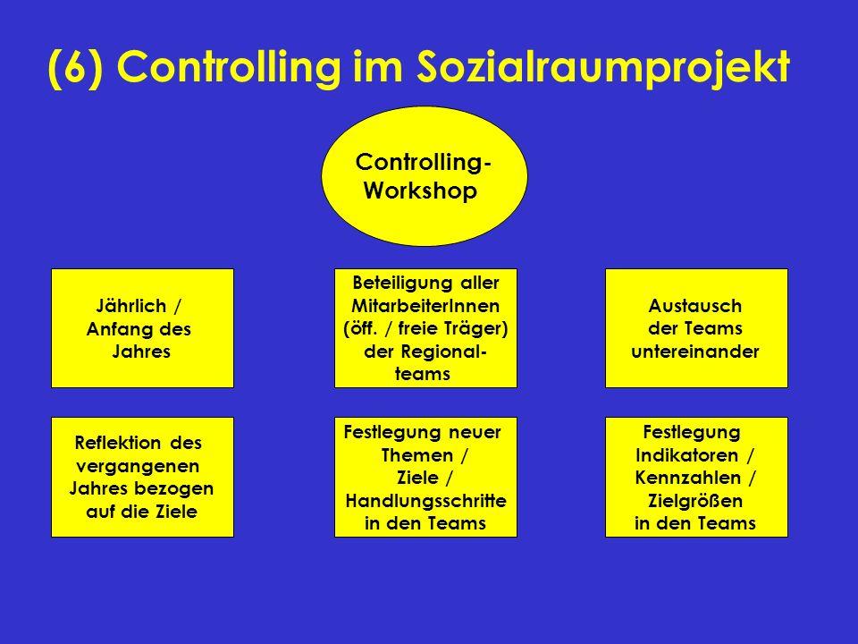 (6) Controlling im Sozialraumprojekt Controlling- Workshop Jährlich / Anfang des Jahres Festlegung neuer Themen / Ziele / Handlungsschritte in den Tea