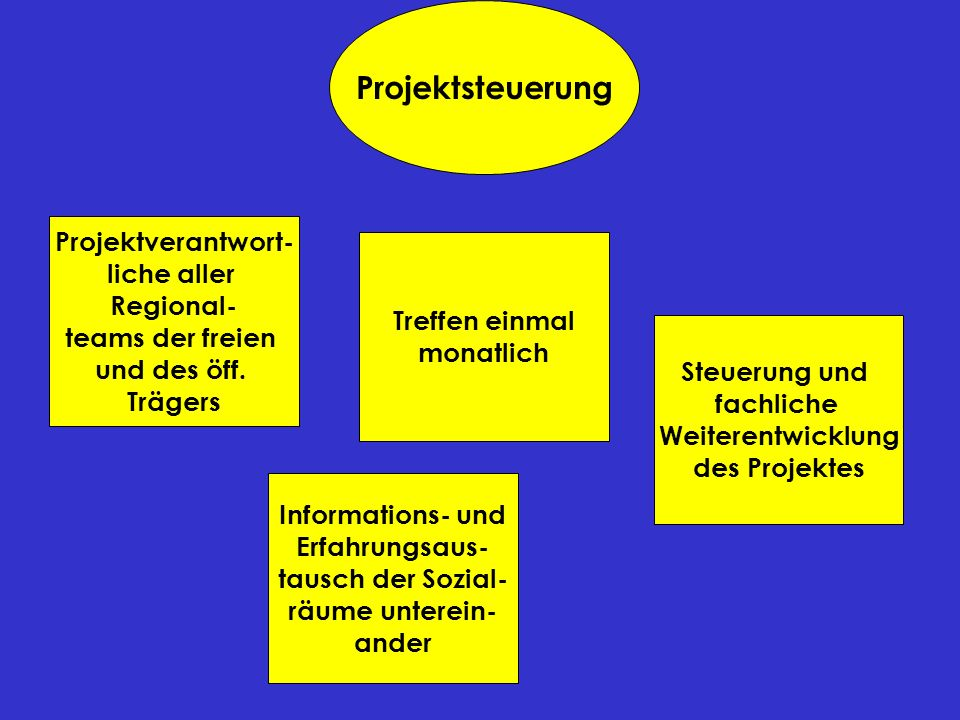 Projektsteuerung Projektverantwort- liche aller Regional- teams der freien und des öff. Trägers Informations- und Erfahrungsaus- tausch der Sozial- rä