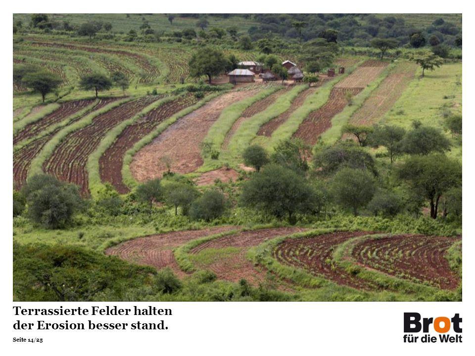 Seite 14/25 Terrassierte Felder halten der Erosion besser stand.