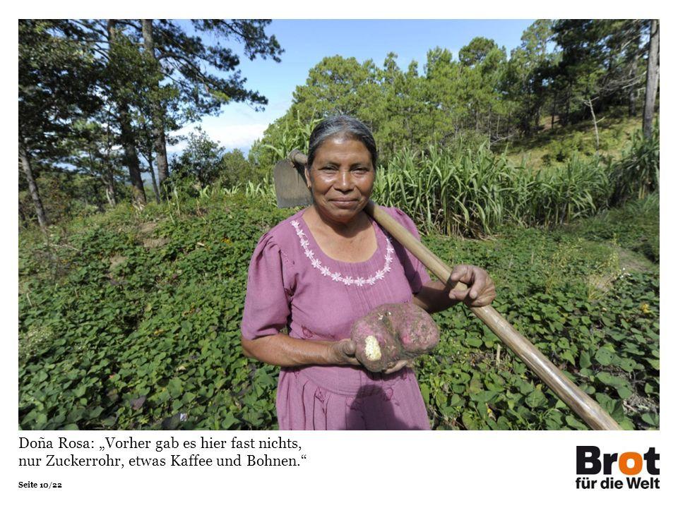 Seite 10/22 Doña Rosa: Vorher gab es hier fast nichts, nur Zuckerrohr, etwas Kaffee und Bohnen.