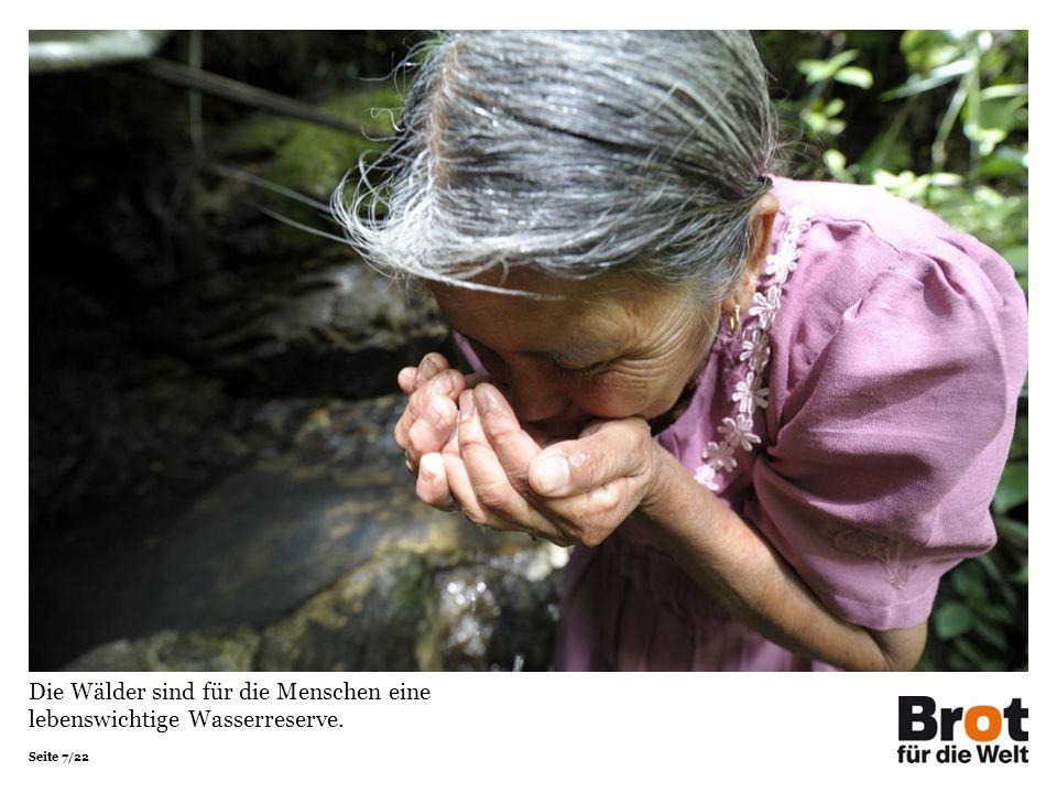 Seite 7/22 Die Wälder sind für die Menschen eine lebenswichtige Wasserreserve.