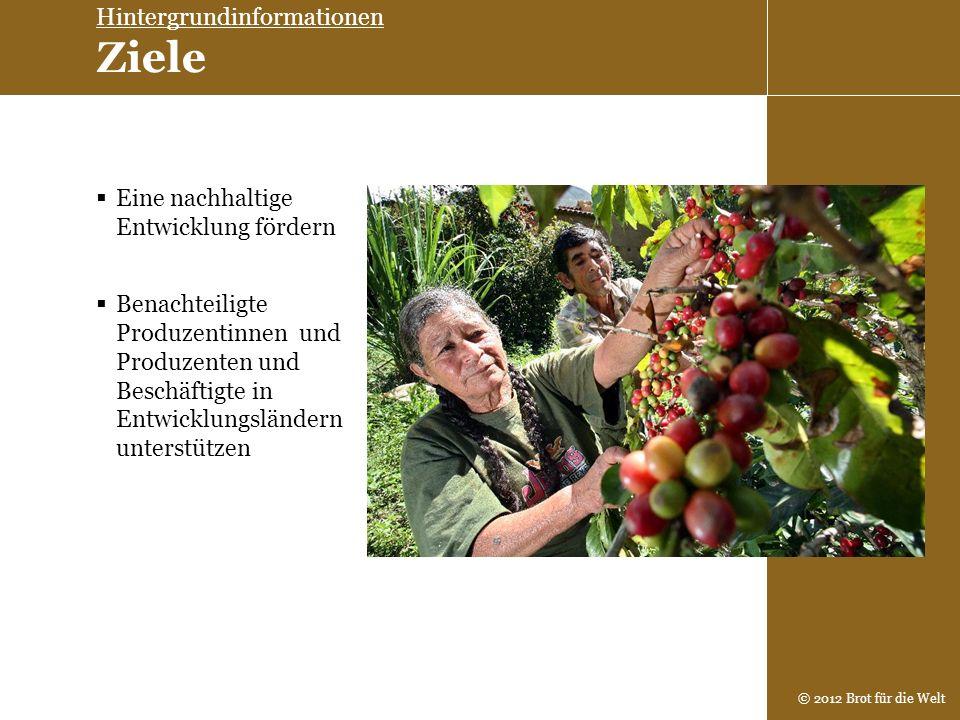 © 2012 Brot für die Welt Eine nachhaltige Entwicklung fördern Hintergrundinformationen Ziele Benachteiligte Produzentinnen und Produzenten und Beschäf