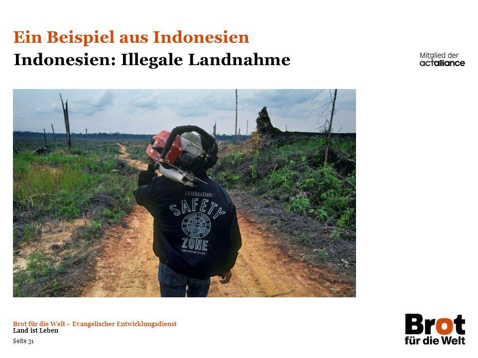 Brot für die Welt – Evangelischer Entwicklungsdienst Land ist Leben Seite 31 Ein Beispiel aus Indonesien Indonesien: Illegale Landnahme