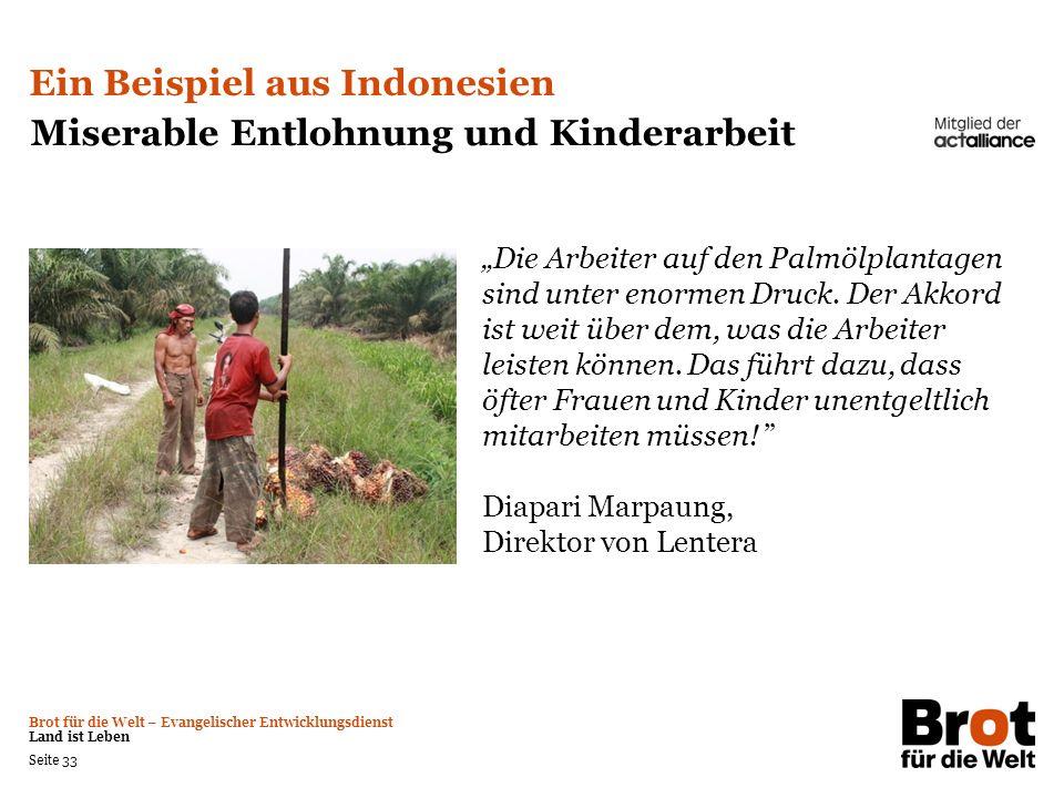 Brot für die Welt – Evangelischer Entwicklungsdienst Land ist Leben Seite 33 Ein Beispiel aus Indonesien Miserable Entlohnung und Kinderarbeit Die Arb