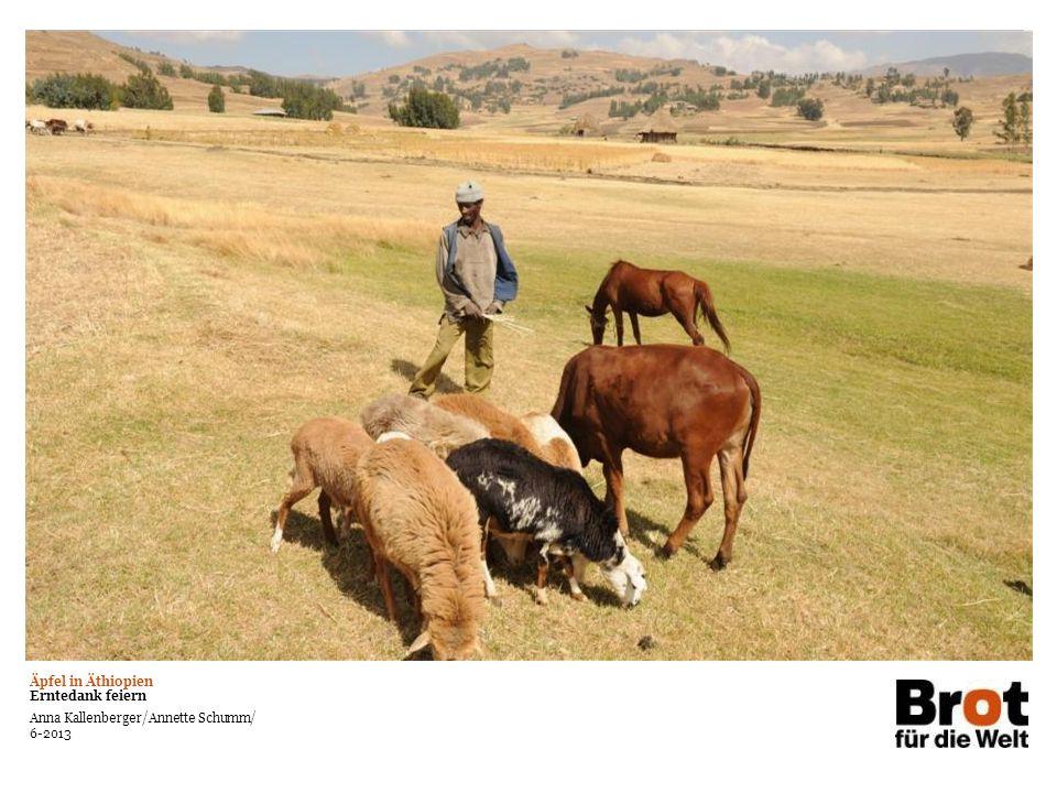 Äpfel in Äthiopien Erntedank feiern Anna Kallenberger/Annette Schumm/ 6-2013 Text auf großem Bildmotiv Kann in weiß oder schwarz verwendet werden