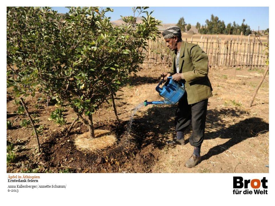 Äpfel in Äthiopien Erntedank feiern Anna Kallenberger/Annette Schumm/ 6-2013 Bereich für Foto oder Grafik Text auf großem Bildmotiv Kann in weiß oder