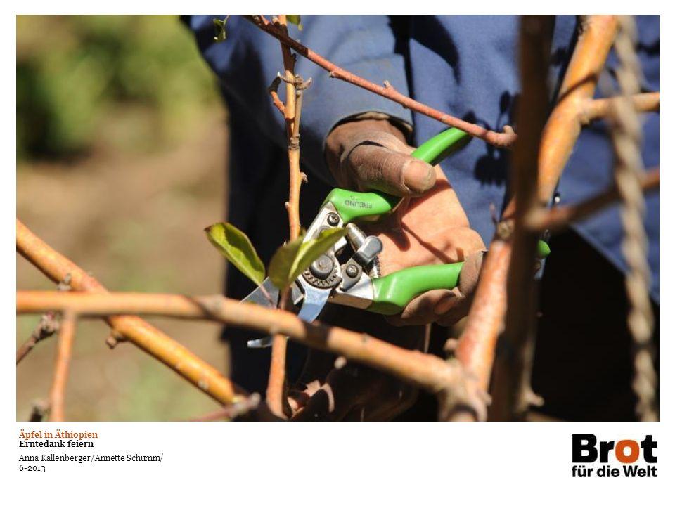 Äpfel in Äthiopien Erntedank feiern Anna Kallenberger/Annette Schumm/ 6-2013 Bereich für Foto oder Grafik Text auf großem Bildmotiv Kann in weiß oder schwarz verwendet werden