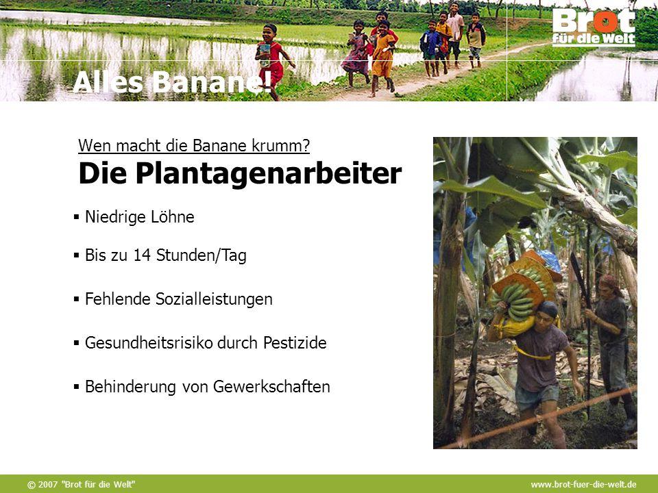 © 2007 Brot für die Welt www.brot-fuer-die-welt.de Alles Banane.