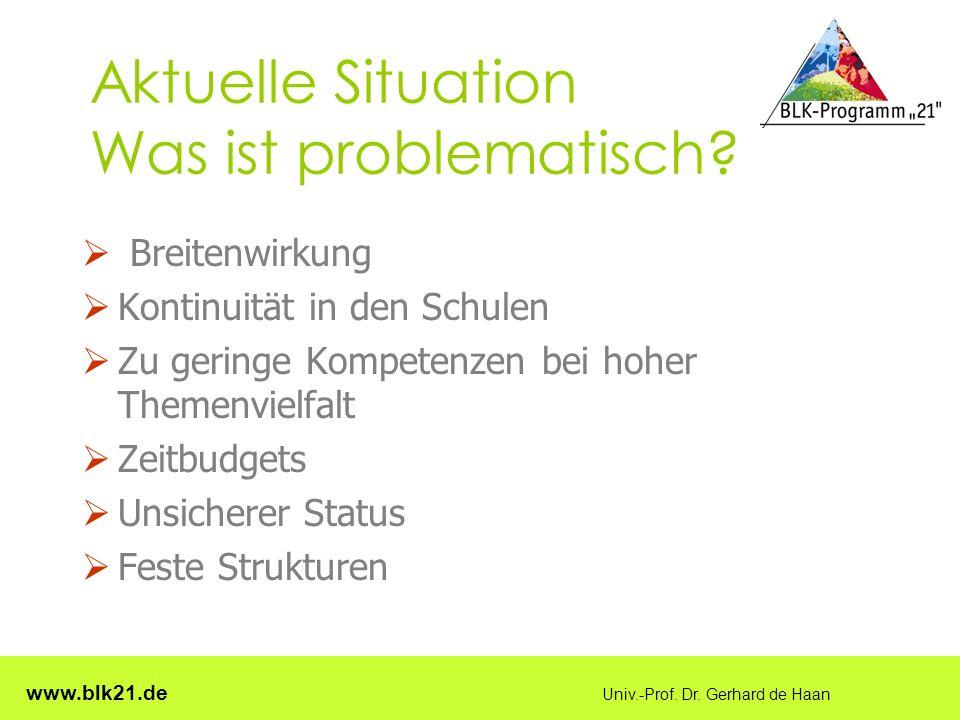 www.blk21.de Univ.-Prof. Dr. Gerhard de Haan Aktuelle Situation Was ist problematisch.