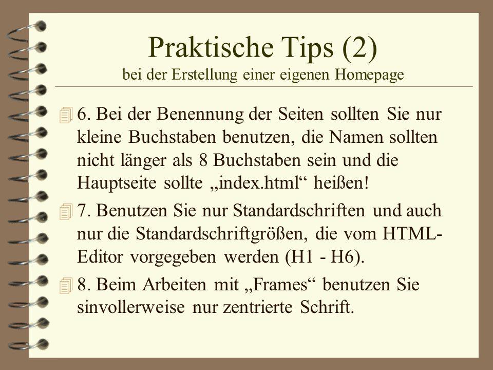 Praktische Tips (2) bei der Erstellung einer eigenen Homepage 4 6. Bei der Benennung der Seiten sollten Sie nur kleine Buchstaben benutzen, die Namen