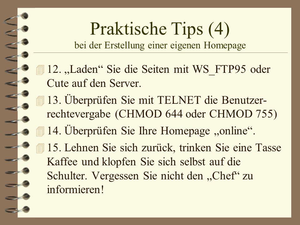 Praktische Tips (4) bei der Erstellung einer eigenen Homepage 4 12. Laden Sie die Seiten mit WS_FTP95 oder Cute auf den Server. 4 13. Überprüfen Sie m