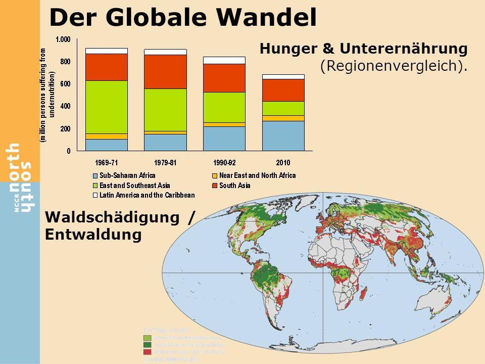 Waldschädigung / Entwaldung Der Globale Wandel Hunger & Unterernährung (Regionenvergleich ).