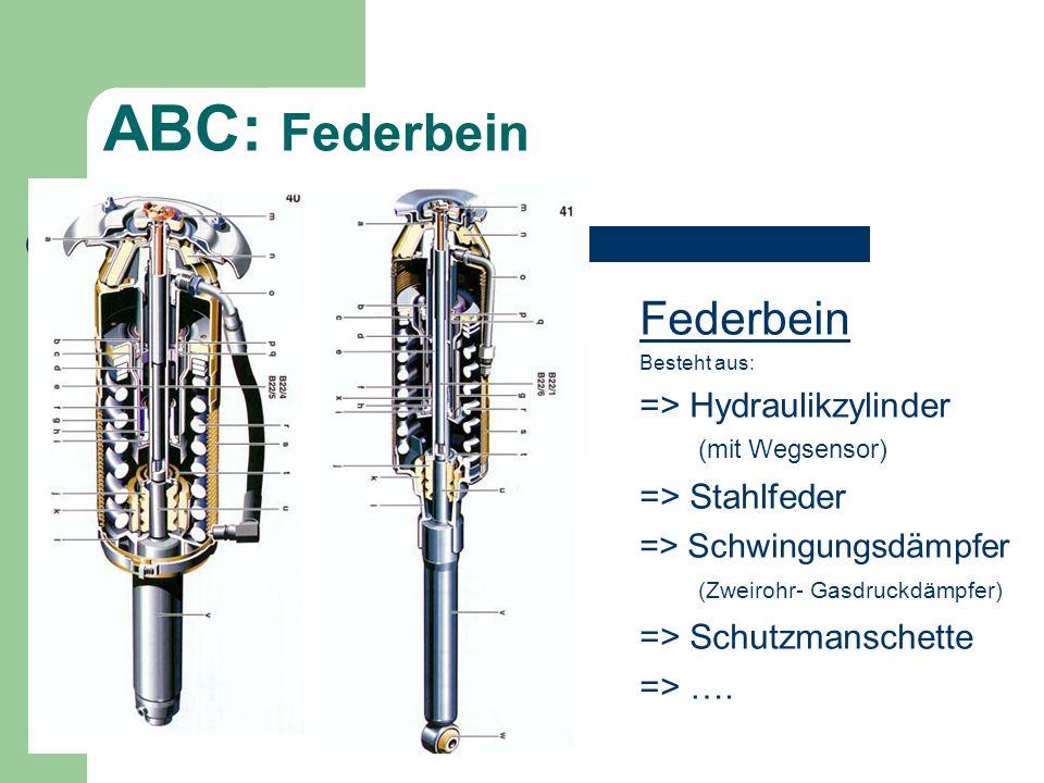 Federbein Besteht aus: => Hydraulikzylinder (mit Wegsensor) => Stahlfeder => Schwingungsdämpfer (Zweirohr- Gasdruckdämpfer) => Schutzmanschette => ….