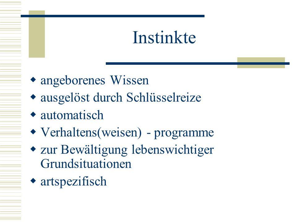 Instinkte angeborenes Wissen ausgelöst durch Schlüsselreize automatisch Verhaltens(weisen) - programme zur Bewältigung lebenswichtiger Grundsituatione