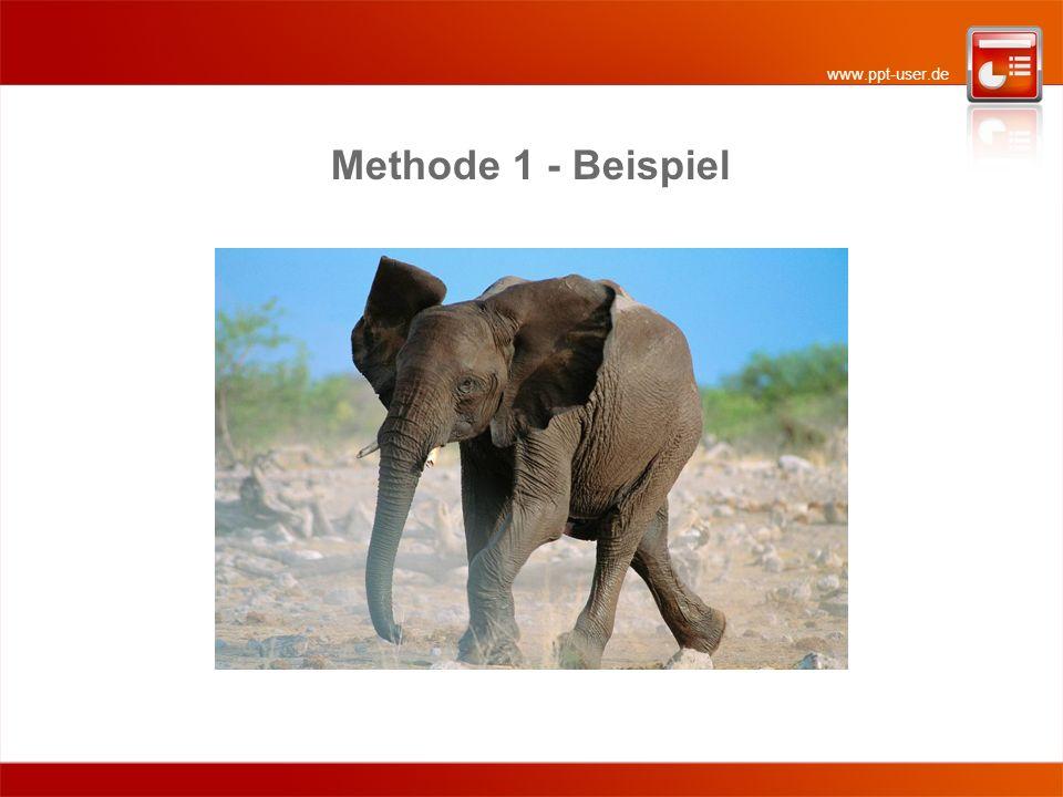 www.ppt-user.de Methode 1: Foto zweimal einfügen (1) Fügen Sie das Foto zweimal ein.