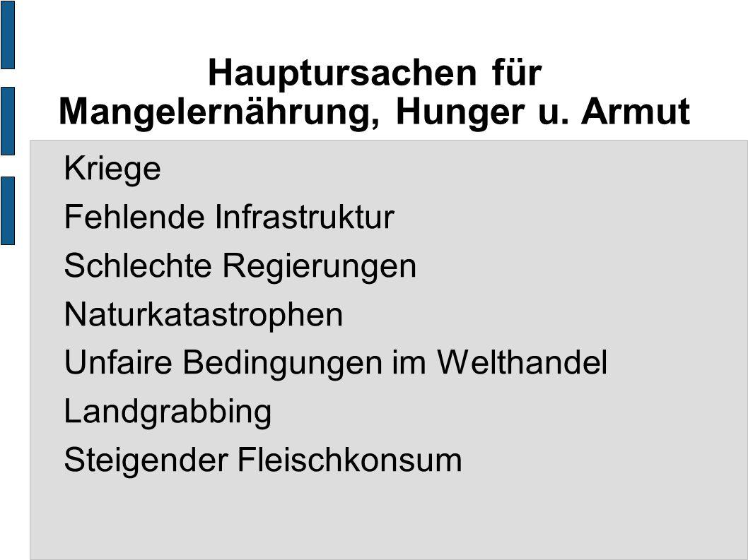 Hauptursachen für Mangelernährung, Hunger u. Armut Kriege Fehlende Infrastruktur Schlechte Regierungen Naturkatastrophen Unfaire Bedingungen im Weltha