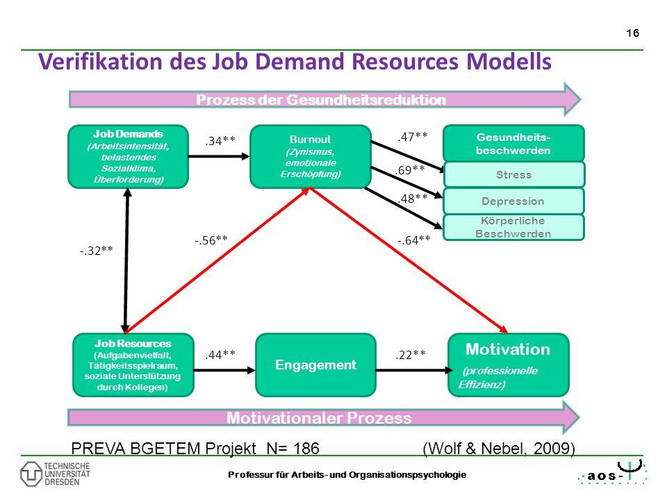 16 Professur für Arbeits- und Organisationspsychologie Verifikation des Job Demand Resources Modells Job Demands (Arbeitsintensität, belastendes Sozia