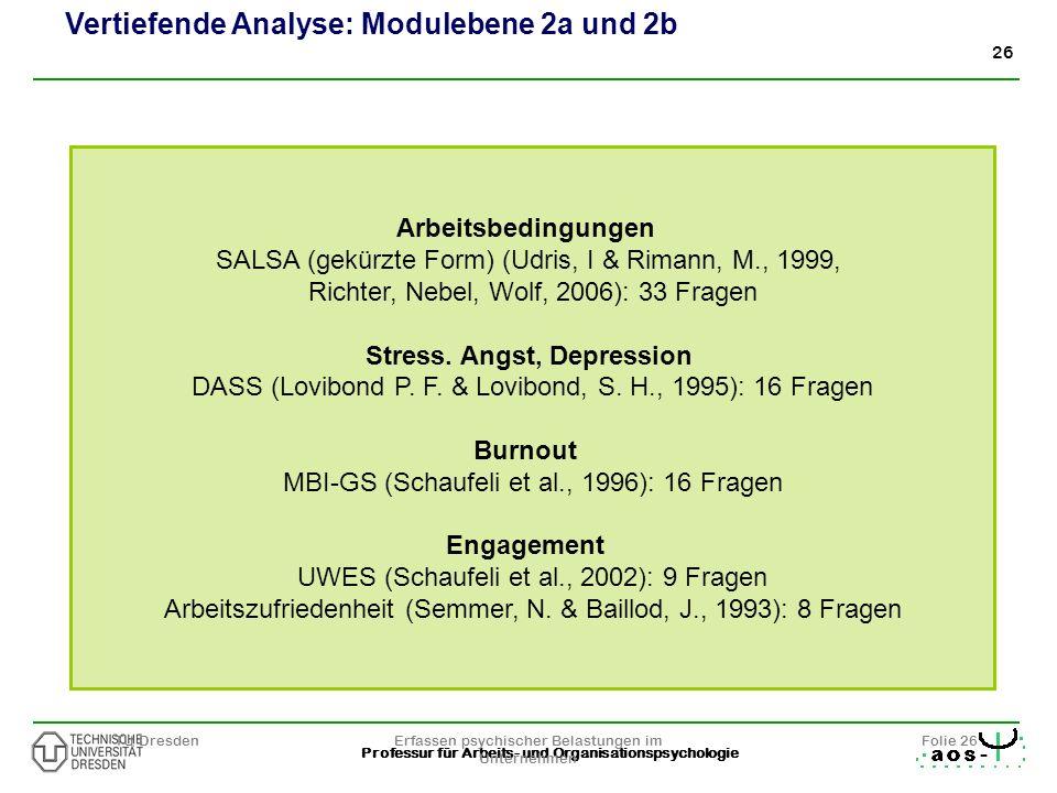 26 Professur für Arbeits- und Organisationspsychologie TU DresdenErfassen psychischer Belastungen im Unternehmen Folie 26 Arbeitsbedingungen SALSA (ge