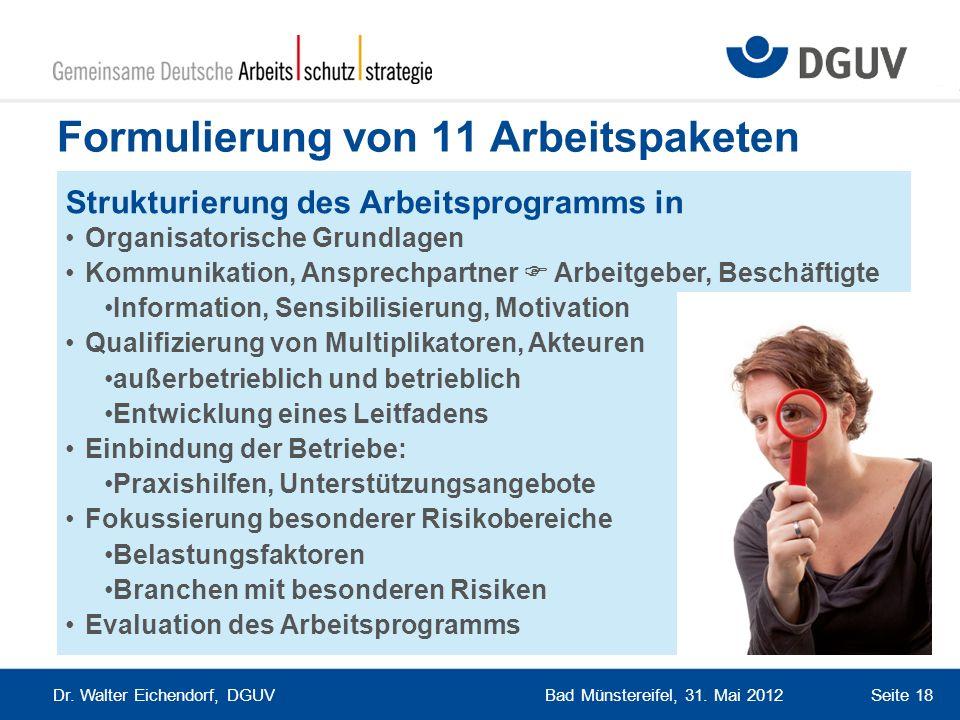 Bad Münstereifel, 31. Mai 2012 Dr. Walter Eichendorf, DGUV Seite 18 Formulierung von 11 Arbeitspaketen Strukturierung des Arbeitsprogramms in Organisa