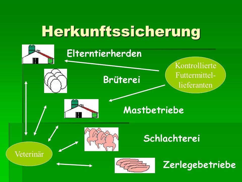 Elterntierherden Brüterei Mastbetriebe Schlachterei Zerlegebetriebe Veterinär Kontrollierte Futtermittel- lieferanten Herkunftssicherung