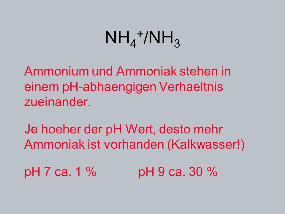 NH 4 + /NH 3 Ammonium und Ammoniak stehen in einem pH-abhaengigen Verhaeltnis zueinander. Je hoeher der pH Wert, desto mehr Ammoniak ist vorhanden (Ka