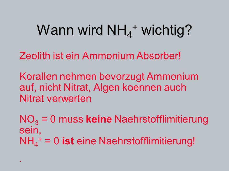 Wann wird NH 4 + wichtig? Zeolith ist ein Ammonium Absorber! Korallen nehmen bevorzugt Ammonium auf, nicht Nitrat, Algen koennen auch Nitrat verwerten
